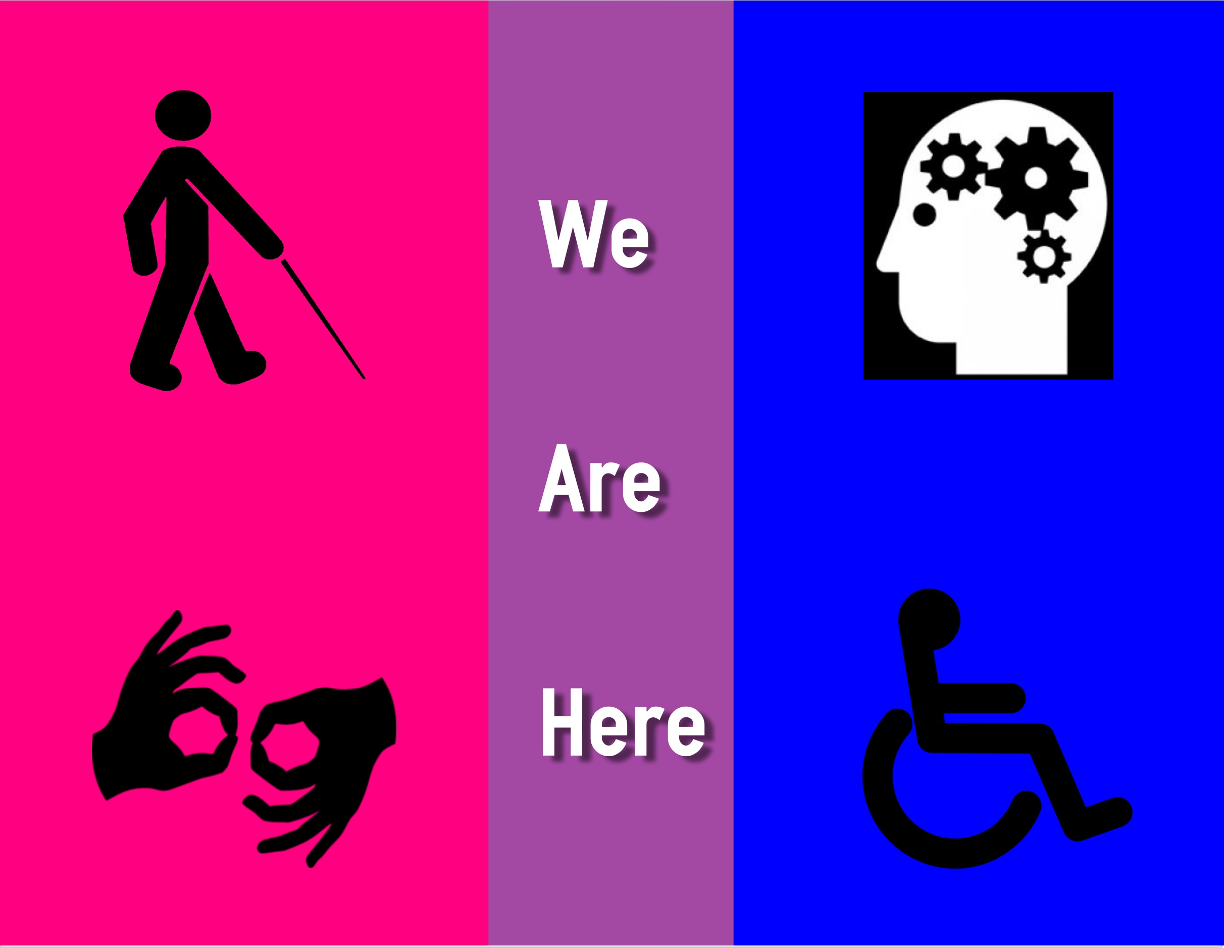Bi Individuals with Disabilities.jpg