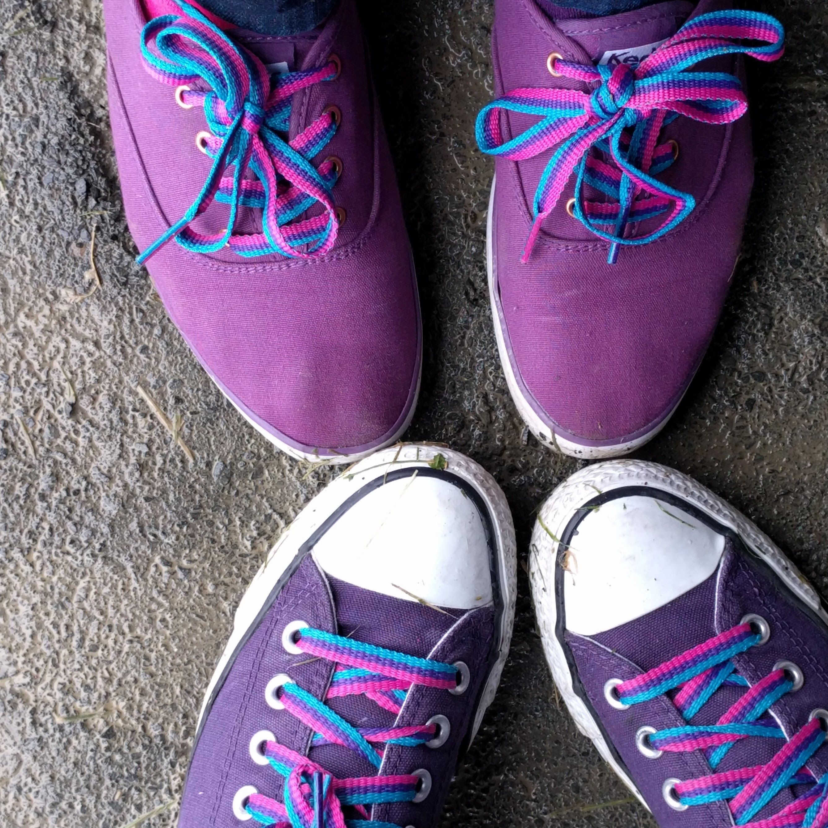 Purple shoes with bi-colored laces
